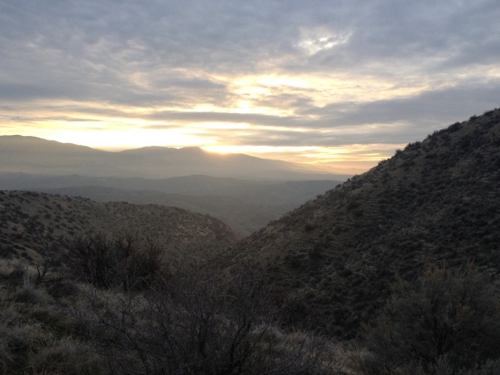good photo, sage and sunrise